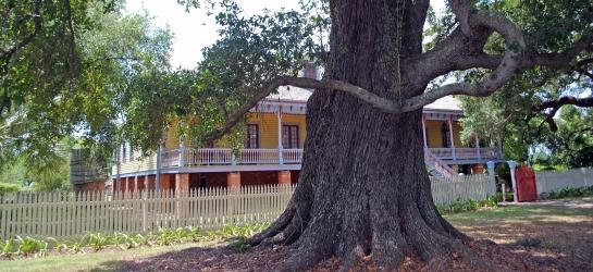 Laura, a Creole plantation near New Orleans.