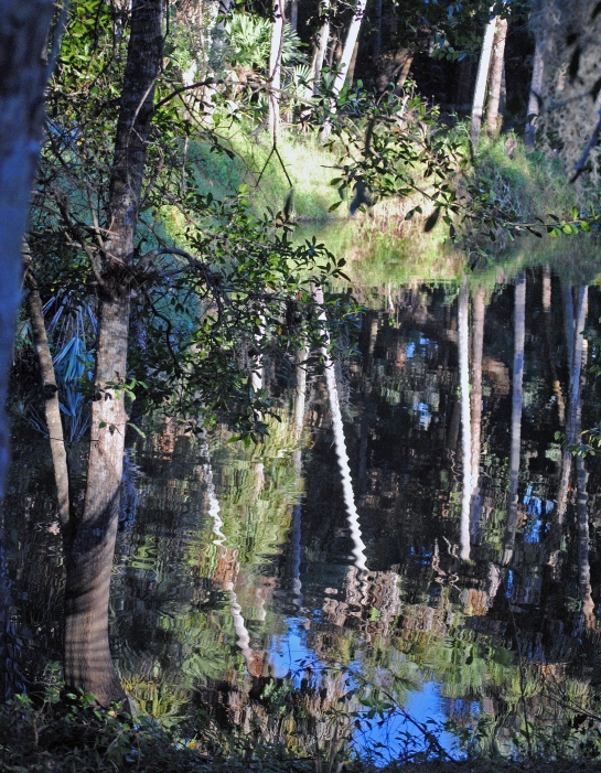 Turkey Creek, Palm Bay, Fla.