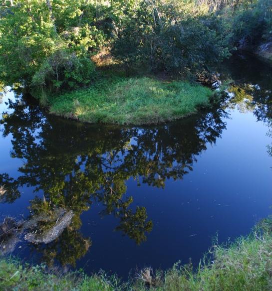 Turkey Creek 2