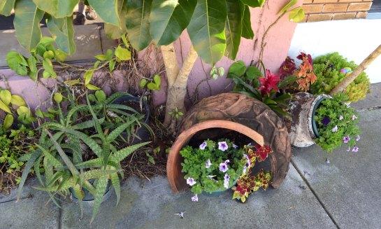 Streetside gardens in Eau Gallie, Fla.