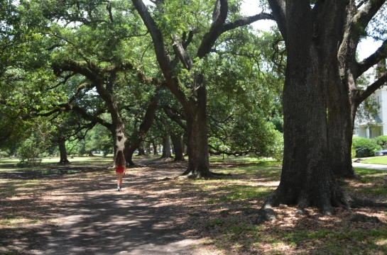 Audubon Park in the Garden District of New Orleans