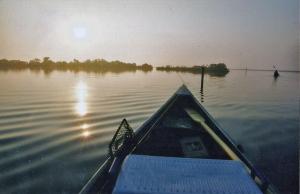 bayoufishing